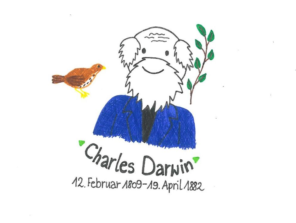 Illustration von Charles Darwin