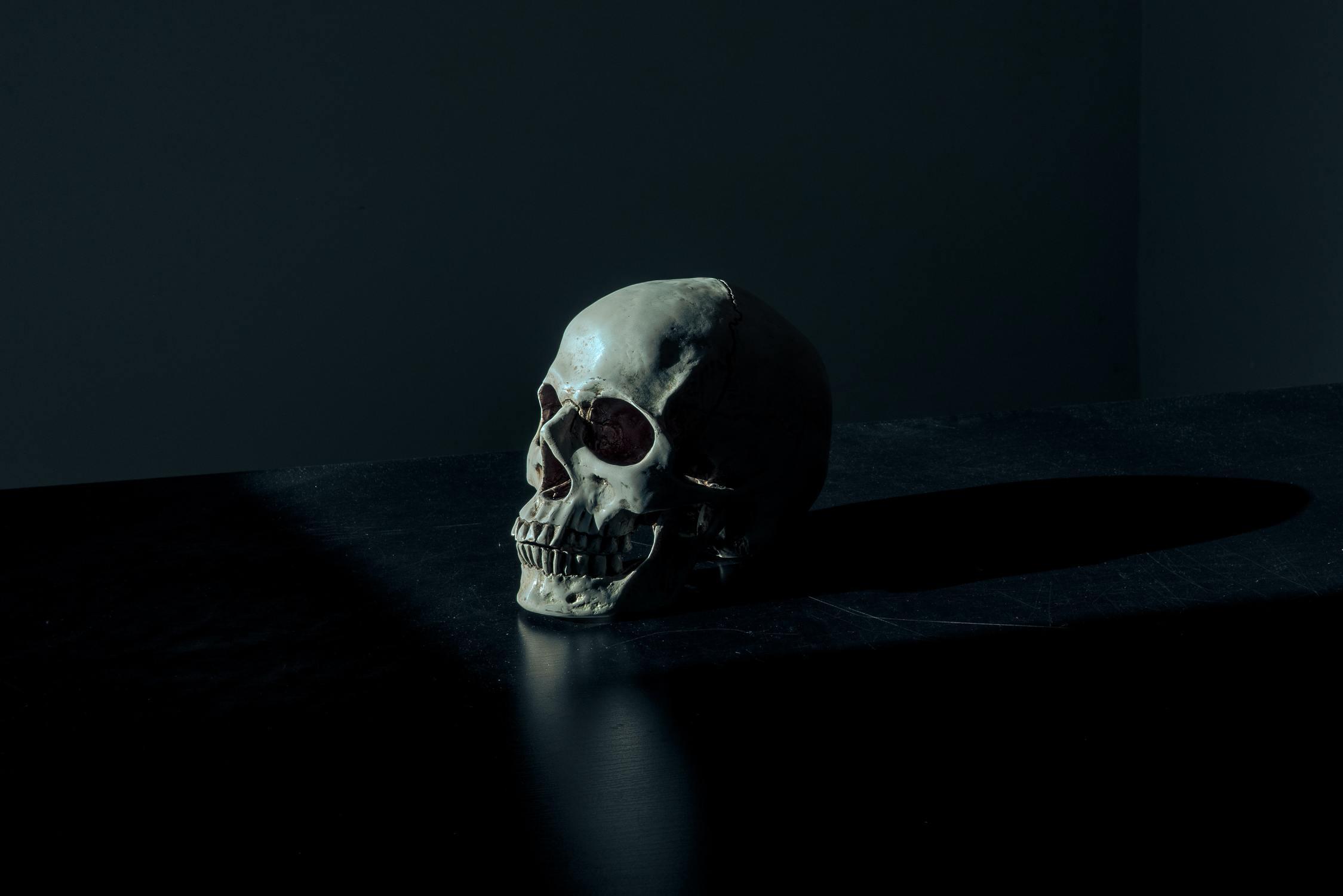 Schädel auf schwarzem Tisch