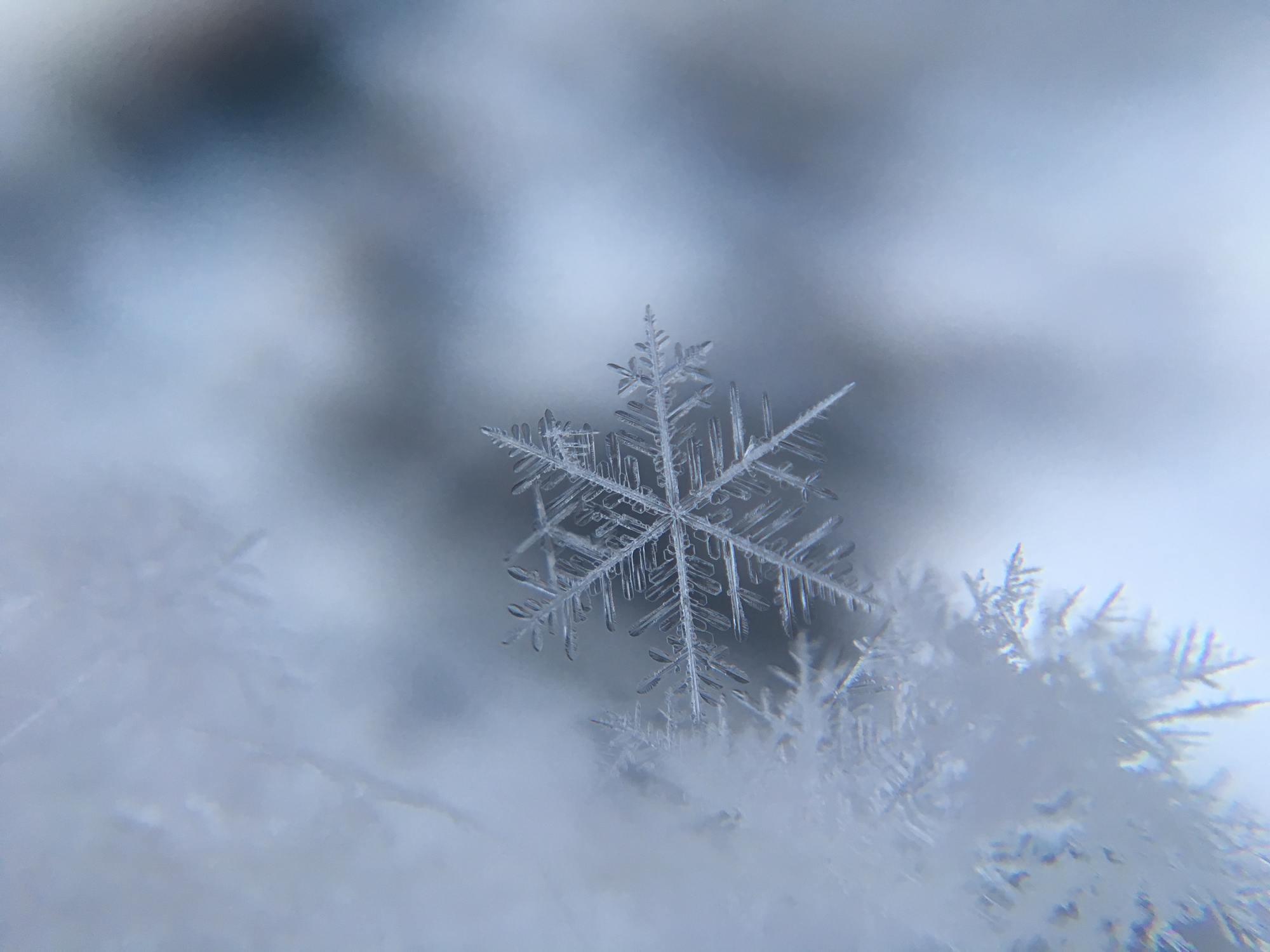 Schmilzt Schnee, so verliert es seine kristalline Struktur und wird durchsichtig.